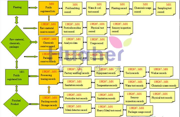 Наша блок-схема системы